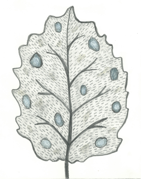 leaf  a day 13-2 - Judy Oakenfull