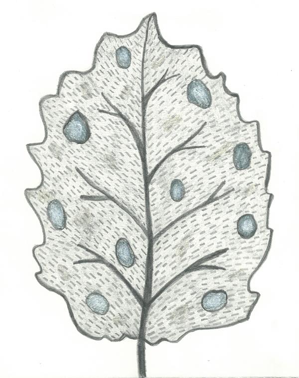 leaf  a day 13-2 - Judy Oakenfull