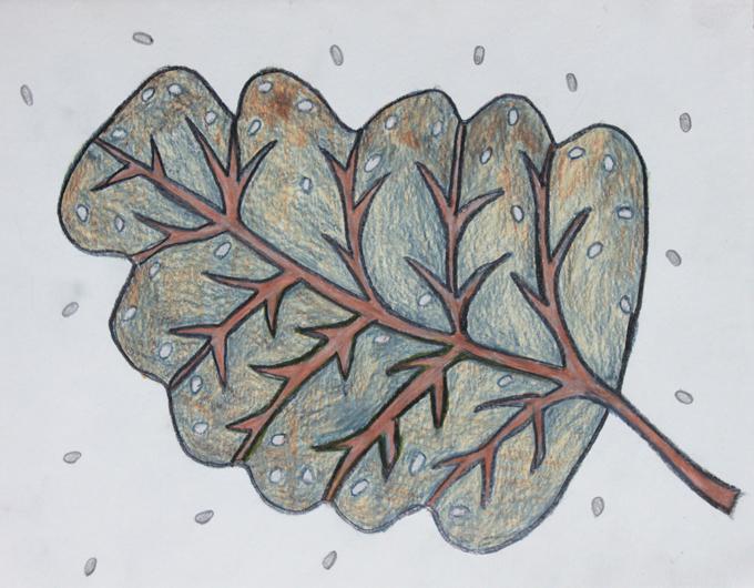 Leaf a day 1-2-14 - Judy Oakenfull