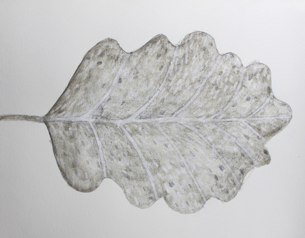 leaf a day 7:2:14 - Judy Oakenfull