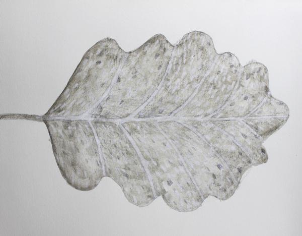 leaf a day 7:2:14 - Judy Oakenfull