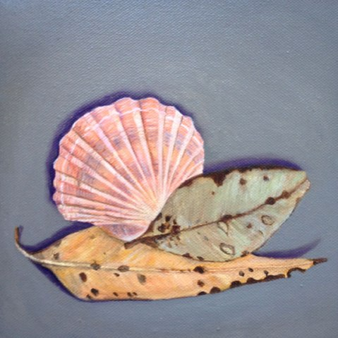 Two-leaves-and-a-shell