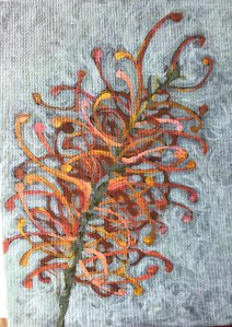 Orange Grevillea Study 2018 Oil on canvas board 12.5 x 18cms