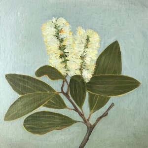 Oil painting of bottlebrush flower