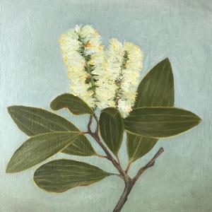 Oil painting of bottlebrush flower