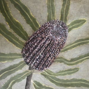 15/52 Banksia, Oil on Board, 20x20cms