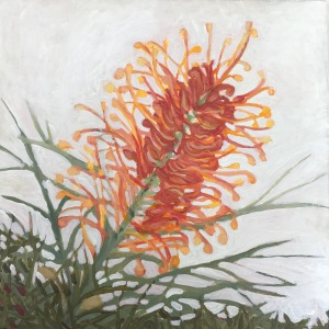 Grevillea oil painting botanical art red orange